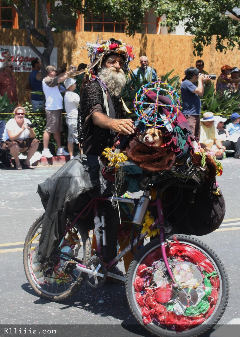 Summer solstice bicycle